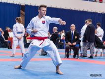 Grand_Prix_Slovakia_Karate_ACT6392