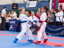 Grand_Prix_Slovakia_Karate_ACT6776