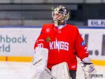 Paneuropa Kings - Akademici Plzeň