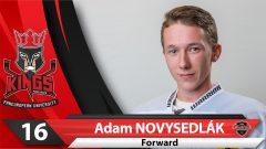 16-Novysedlak